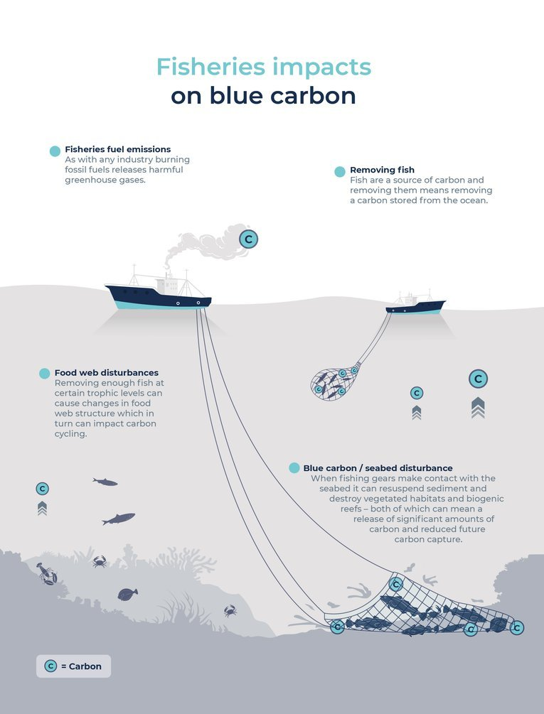 Climate-smart fishing - Infographic