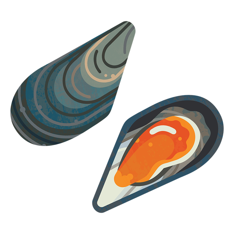 Mussel Common M 960.png