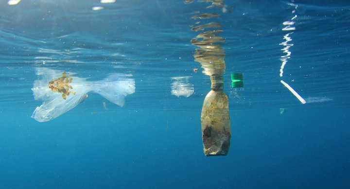 Plastic litter in the sea Rich Carey