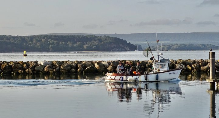 Fishing boat coming into Poole Harbour Belinda Fewings